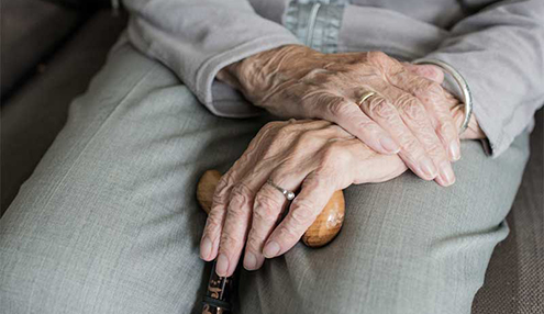 Older person's hands holding a walking stick